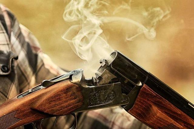 Jäger erschießt aus Versehen zwei Pferde