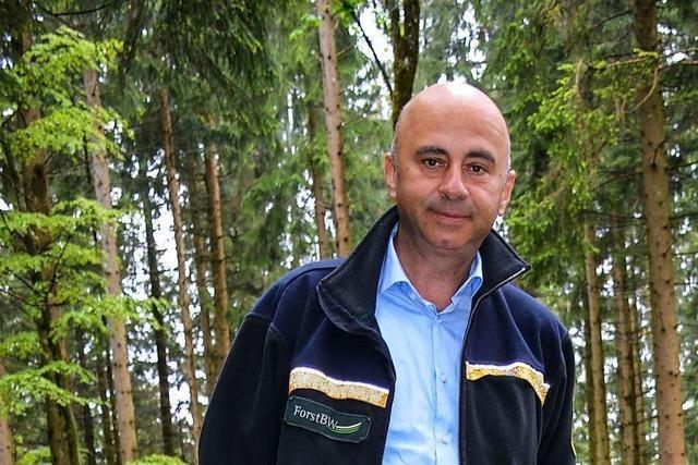 Das Kreisforstamt Breisgau-Hochschwarzwald bekommt einen neuen Chef