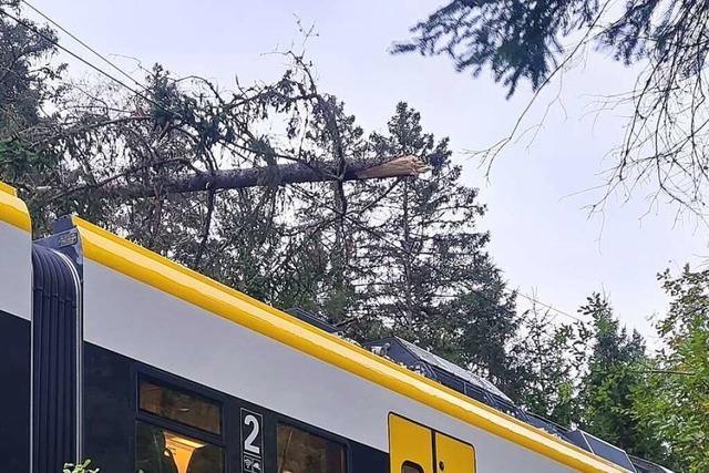 Höllentalbahn nach Sturmschäden im Schwarzwald wieder in Betrieb