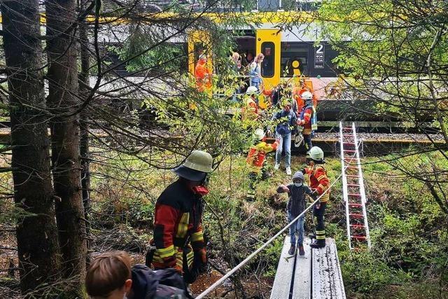 Zug evakuiert und viele Feuerwehreinsätze