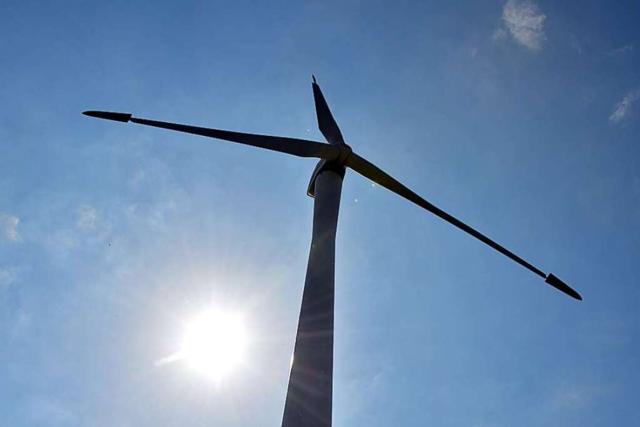 Staatsforst bietet Flächen auf dem Blauen für Windkraft an