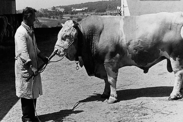 So lief die landwirtschaftliche Ausbildung in Emmendingen in den 60er-Jahren